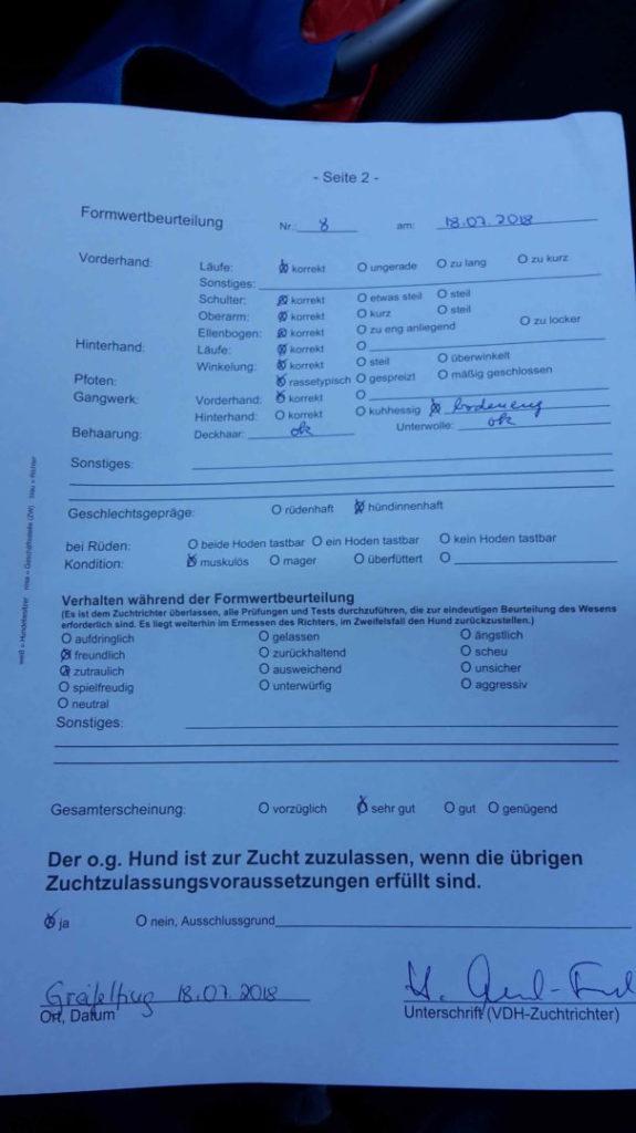 18.07.2018  Crossers Aenni erhält Formwertbeurteilung sehr gut !!!